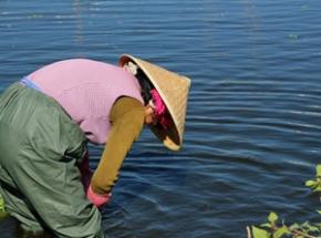 china visser