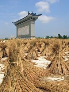 China klimaat - Graan