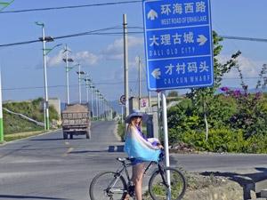 china rond reis