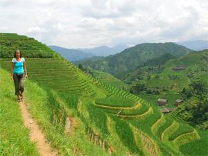 china reis rijstvelden