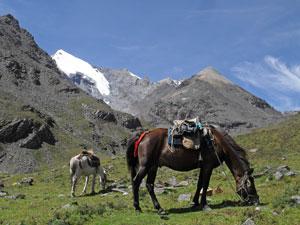 Paardrijden Songpan China reis