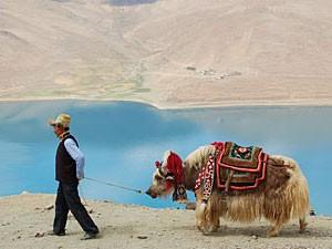 tibet reis yamdrok china reis