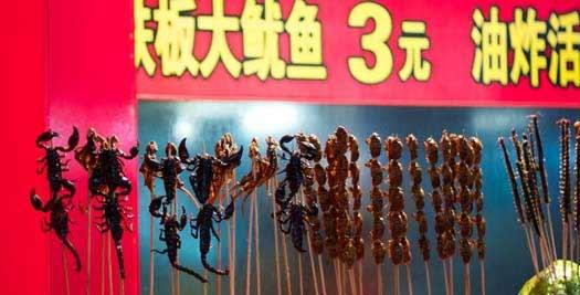 Reis China - insecten eten