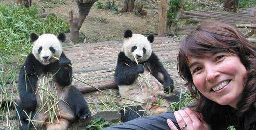 Ontmoet panda's tijdens je China reis