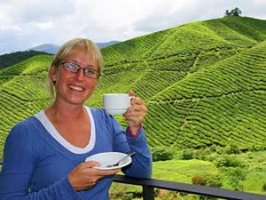 cameron highlands Maleisië Borneo rondreis