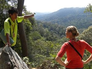 jungle Maleisië rondreis 3 weken