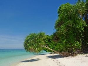 Strand - Klimaat Borneo Maleisie