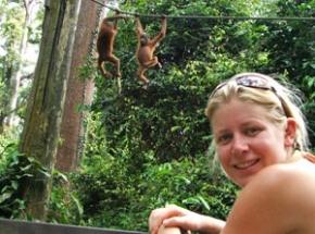 sepilok orangutan rehabilitatie borneo