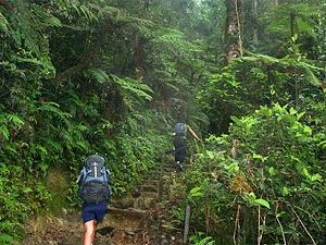 trekkingen mountkinabalu borneo