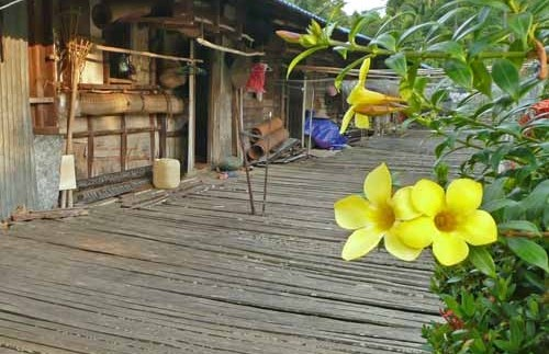 Homestay Borneo