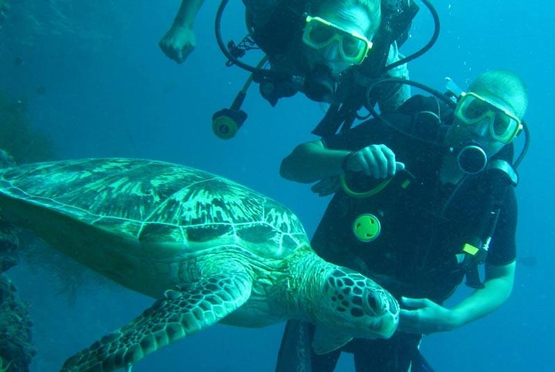 Reis Maleisië - duiken