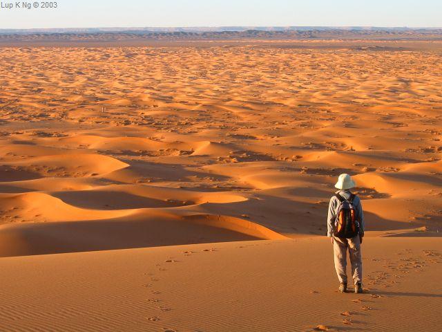 woestijnreis marokko sahara