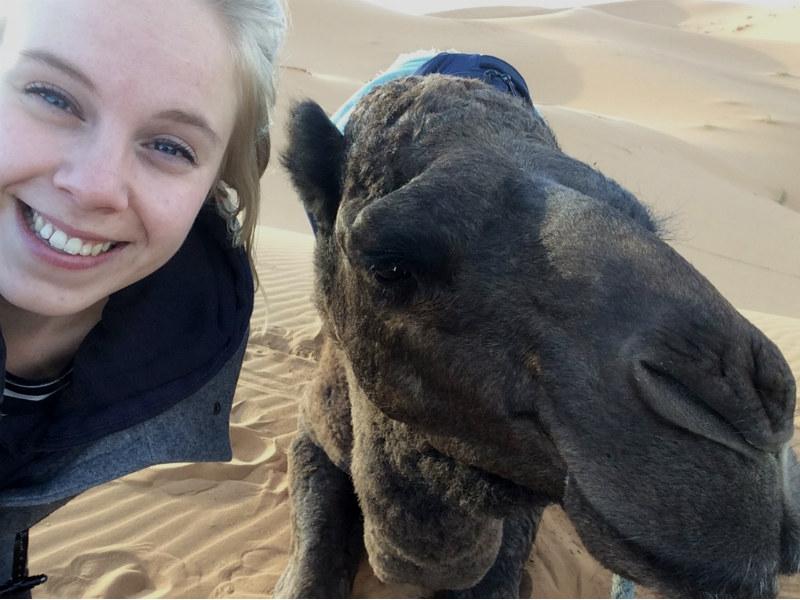 Woestijn Merzouga kameel