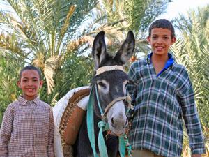 marokko kamelentocht berber familie