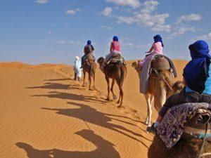 Marokko woestijnreis - karavaan