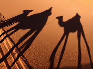 Zagora woestijnreis Marokko schaduw