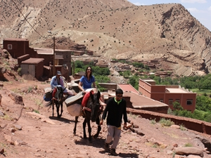 marokko ezel anmiter