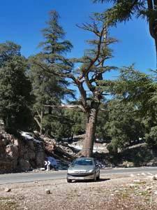marokko route rissani