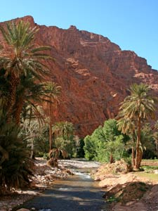 marokko todra gorge