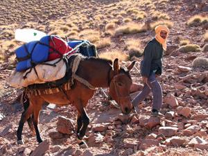 marokko toubdal trekking ezel