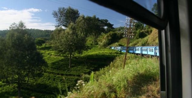 Optionele treinreis Sri Lanka Ella