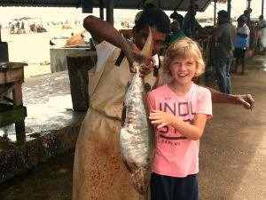 Negombo Sri Lanka Kids - vis markt Negombo