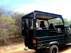 safari Sri Lanka met kinderen - in de jeep