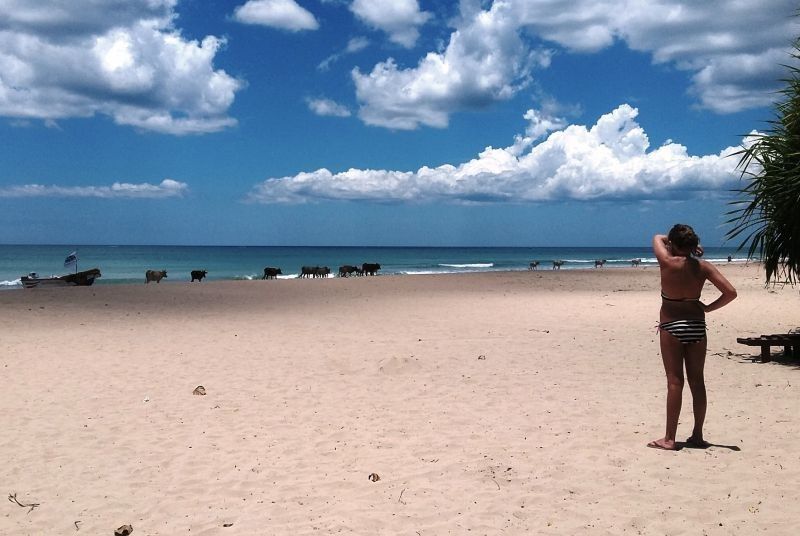 Strand tijdens je Sri Lanka reis