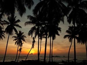 zonsondergang bij de schildpadden Sri Lanka in Tangalle