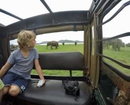rondreis sri lanka met kinderen - jeep