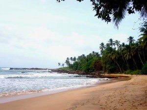 schildpadden Sri Lanka vind je op de stranden bij Tangalle