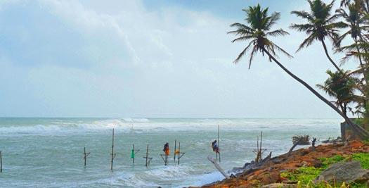 Sri Lanka reizen - paalvissers