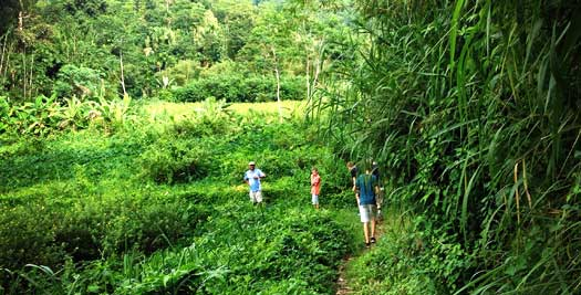 Special Stay koloniaal landhuis - Kandy Sri Lanka