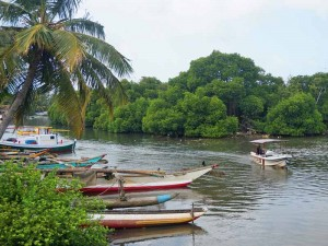 sri-lanka-reis-kinderen-negombo-lagune