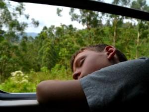 in de trein naar Ella - familiereis Sri Lanka
