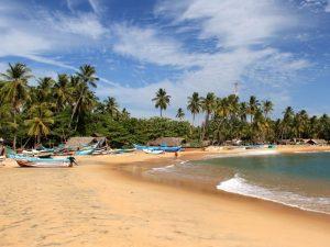 Surfen Sri Lanka met kinderen