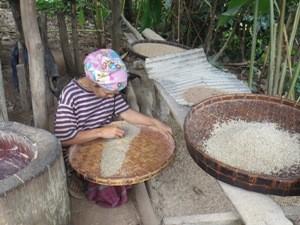 Frau hockt vor Flechtschale und sortiert Reis