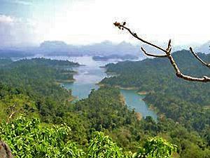 Von Bangkok nach Koh Samui: Khao Sok Nationalpark