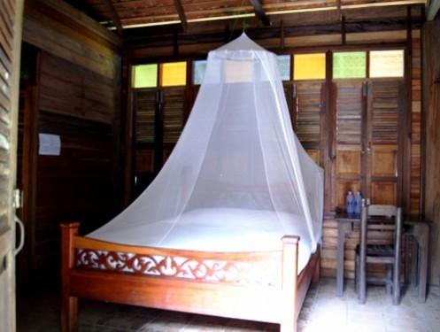 Zimmer im Dschungel von Khao Sok
