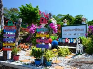 Schilder auf dem Weg zum Viewpoint auf Koh Phi Phi