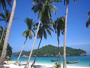Familienreise Thailand: Palmenstrand auf Koh Samui