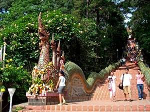 Chiang Mai Elefanten: Die Treppen zum Doi Suthep Tempel