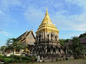 Chiang Mai Elefanten: Goldene Tempeldächer in Chiang Mai