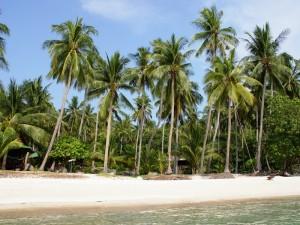 Strand auf Koh Tao mit Kindern besuchen