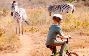 Kind auf Safari in Südafrika