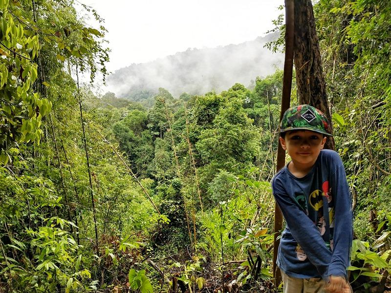 Dschungelabenteuer in Thailand