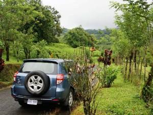 Auto vor grüner Landschaft in Monteverde