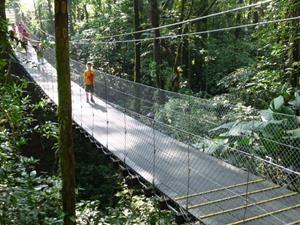 Kind auf Hängebrücke in Monteverde