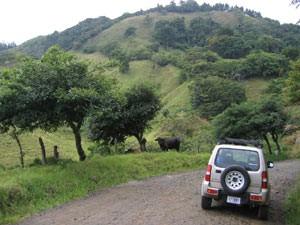 Mietwagen vor grüner Landschaft des Nebelwald Monteverde