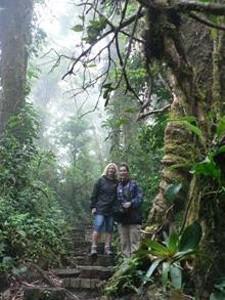 Zwei Frauen stehen an einem großen Baum im Nebelwald Monteverde